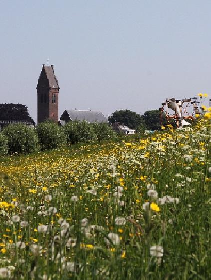 Een blik op Oosterhout vanaf de dijk.
